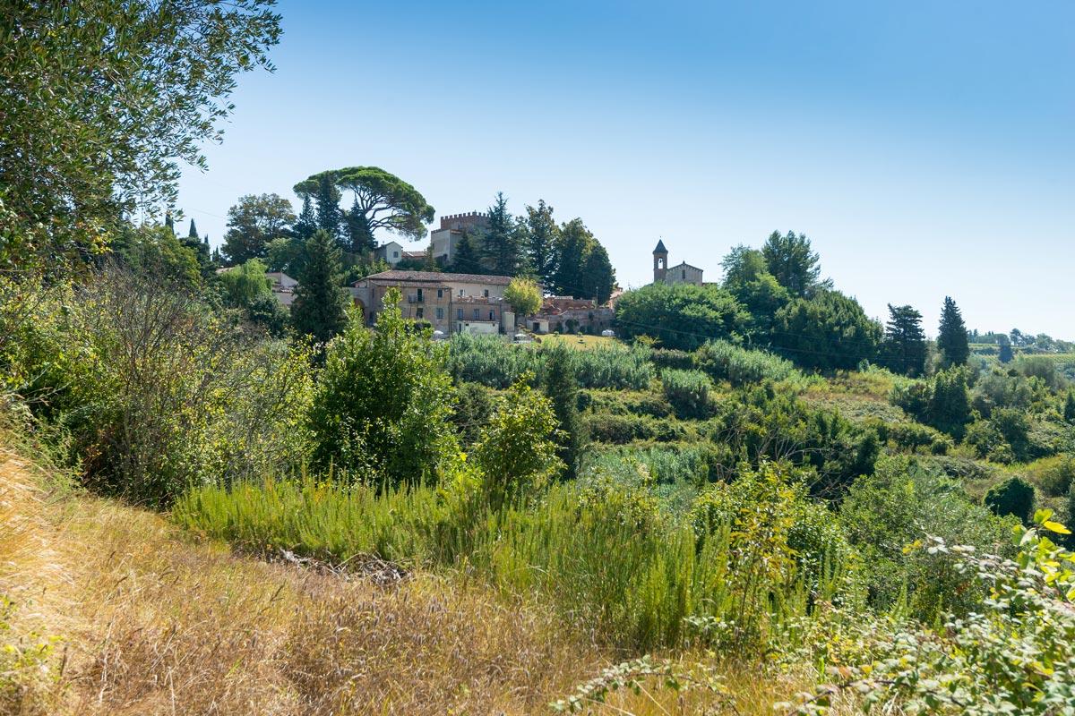 Azienda Agricola di San Gervasio - a völgyből nézve