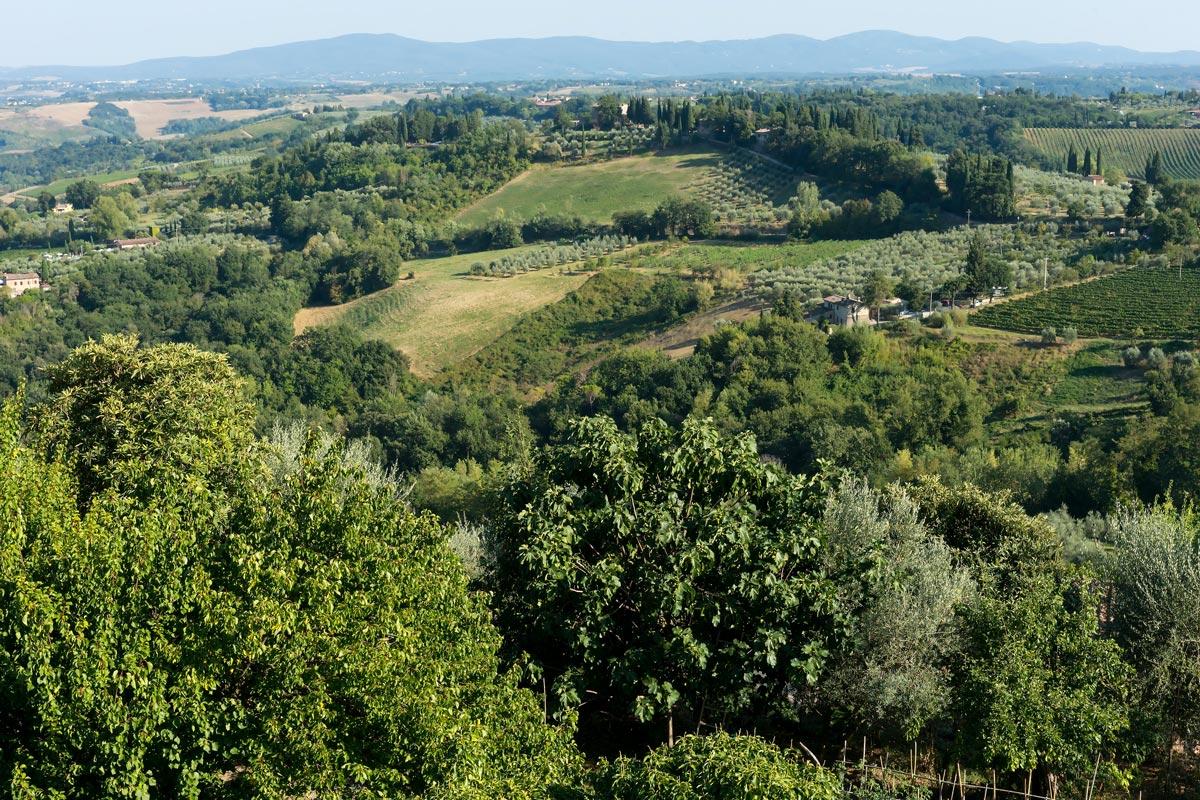 San Gimgnano- a környékbeli dombok