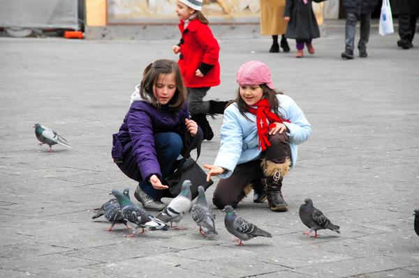 PhotoTrip - Padova, Italy