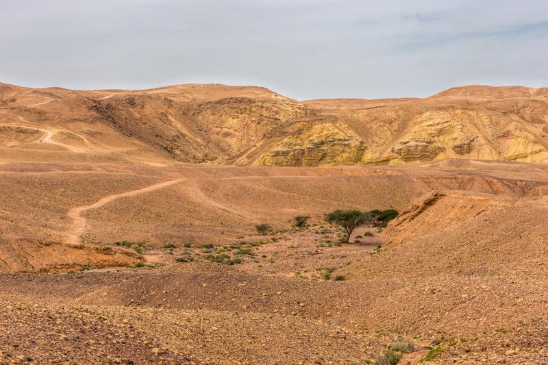 A Negev sivatag - sziklák, kövek és változatos színek minden árnyalatban
