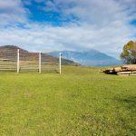 Csak egy legelő, na de a háttér! Bled, Szlovénia